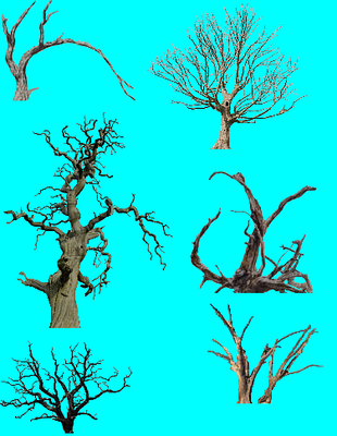 DeadTrees1.PNG